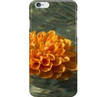 Floating Autumn - Chrysanthemum Blossom in the Fountain iPhone Case/Skin