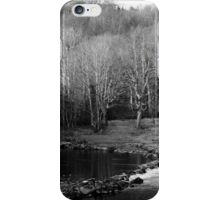 Trees in winter iPhone Case/Skin