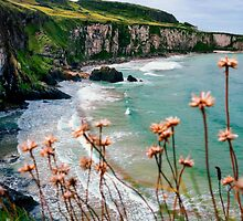 The White Cliffs, North Antrim Coast by Alan Campbell