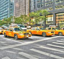 New York Yellow Cabs by Sue Leonard