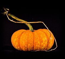 The Pumpkin by KSKphotography