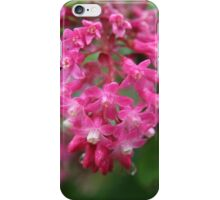 Blackcurrant flowers - 2011 iPhone Case/Skin