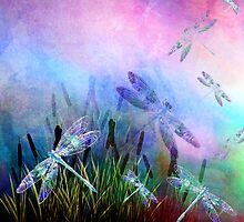 MY MAGICAL DRAGONFLY SEASONS by Tammera