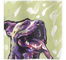 Pitbull Dog Bright colorful pop dog art Poster