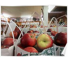 Autumn Apple Picking Poster