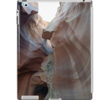 a glimpse of morning light iPad Case/Skin