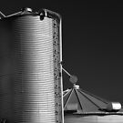 Steel Silo by cclaude