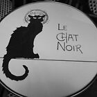 Le Chat Noir by 1oddgirl