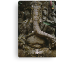 An elephant never forgets. Canvas Print