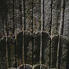 Stone Feathers by strangerandfict