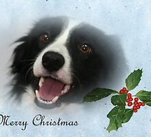Border Collie Christmas Card by Furtographic