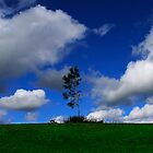 Under the Clouds by Angelika  Vogel