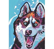 Siberian Husky Bright colorful pop dog art Photographic Print