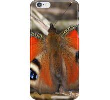 European Peacock iPhone Case/Skin