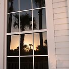 The Window by Donna Adamski