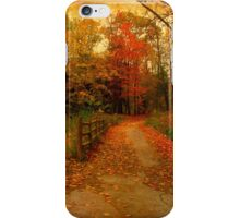 Sauntering into the rusts iPhone Case/Skin
