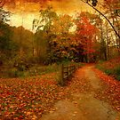 Step into Autumn by MarianBendeth