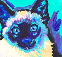 Siamese Cat Bright colorful pop kitty art by bentnotbroken11