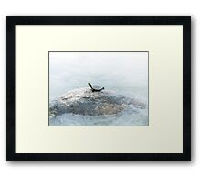 Youth, Longevity, and Well-Being Framed Print