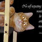 Self respecting cat by vigor