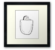 peek-a-boo pocket Framed Print