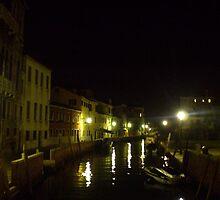 Venice Through a Broken Camera by Mui-Ling Teh