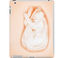 Warm like a Firefly... iPad Case/Skin