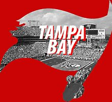 Tampa Bay Florida by BeinkVin