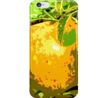 SUNSHINE IN THE ORCHARD iPhone Case/Skin