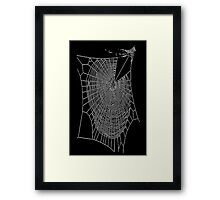A Large Illustration Of A Spider's Web Framed Print