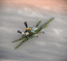 Buchón Duo - Shoreham Airshow 2014 by Colin J Williams Photography