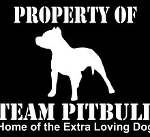 PROPERTY OF TEAM PITBULL by inkedcreatively