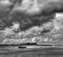 Sky Field 2 by maratshdey