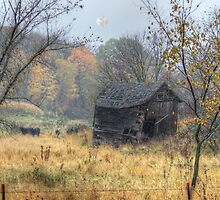 Autumn Beckons Beyond the Pasture by wiscbackroadz