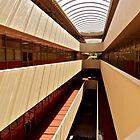 Marin County Civic Center, Frank Lloyd Wright Architect by Scott Johnson