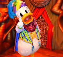 Donaldo the Snake Charmer by AngelaHRey