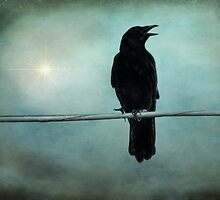Surreal Black Crow Warning Call Twilight Magic by Melissa Bittinger