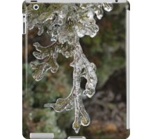 Mother Nature's Christmas Decorations - Cypress Branches iPad Case/Skin