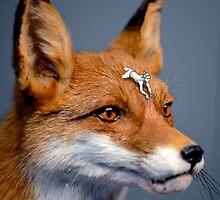 Foxy rider by Dagloos