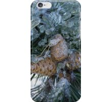 Mother Nature's Christmas Decorations - Pine Cones iPhone Case/Skin