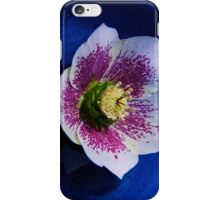 Hellebore iPhone Case/Skin