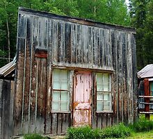 Ghost Town Cabin with the Pink Door by Amy McDaniel