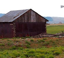 Old Colorado Barn and Windmill by Amy McDaniel