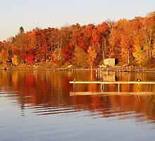 Autumn Shoreline by AUDEO
