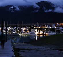 Skagway's Small Boat Harbor by Will Dudley