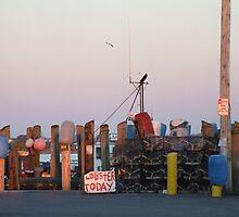 Galiee, rhode island dock by Maureen Zaharie