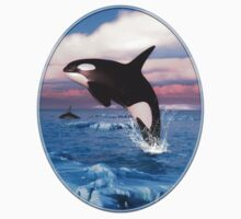 Killer Whales In The Arctic Ocean T-Shirt