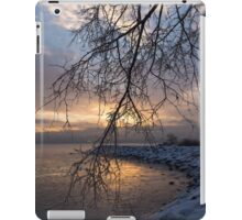 A Curtain of Frozen Branches - Ice Storm Sunrise iPad Case/Skin