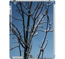 Mother Nature's Christmas Decorations - Icy Twig Jewels iPad Case/Skin