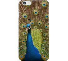 Peacock display  iPhone Case/Skin